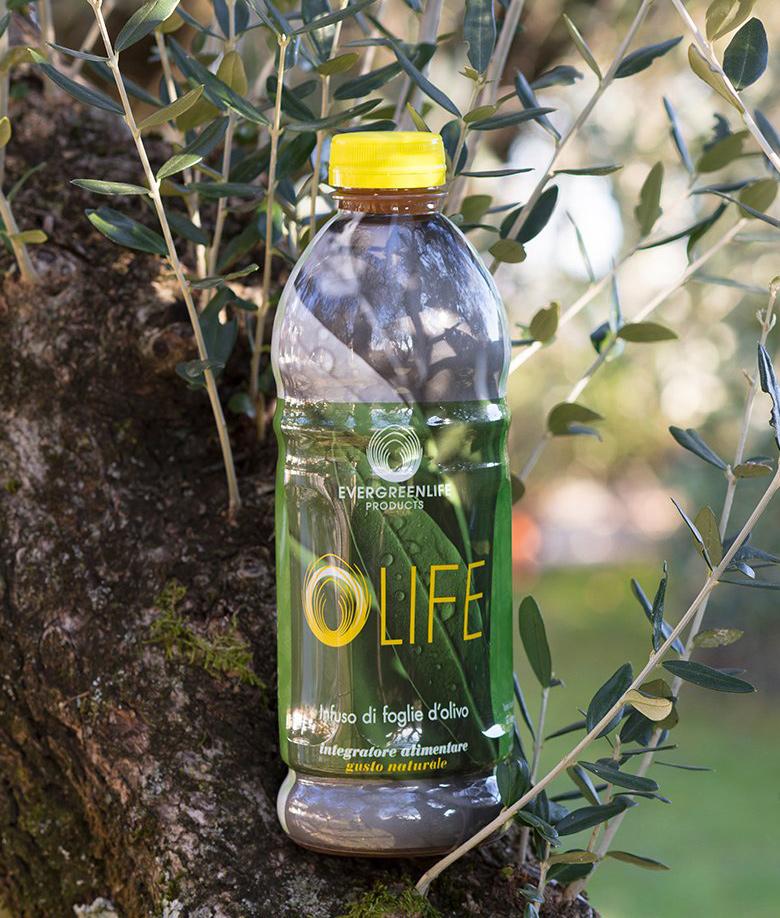 OLIFE - функциональный напиток из Италии на основе настоя оливковых листьев